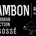 Jambon-ibérique-de-gland-Patabrava-sélection-13-14-désossé